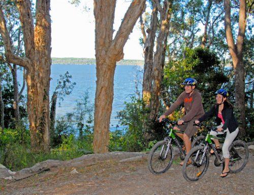 Explore Lake Weyba – by bike, canoe or standup paddleboard